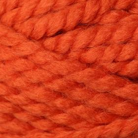 Photo of 'Encore Mega' yarn