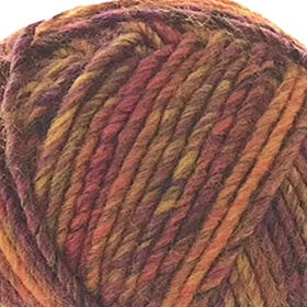 Photo of 'Botanics Chunky' yarn